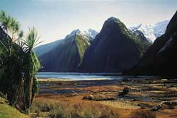 Grant McSherry Milford Sound painting
