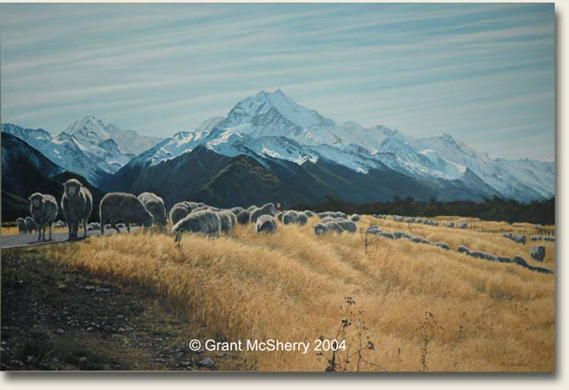 Merino sheep at Aoraki Mt Cook. Painting by Grant McSherry