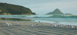 Grant McSherry Ohope Beach Painting